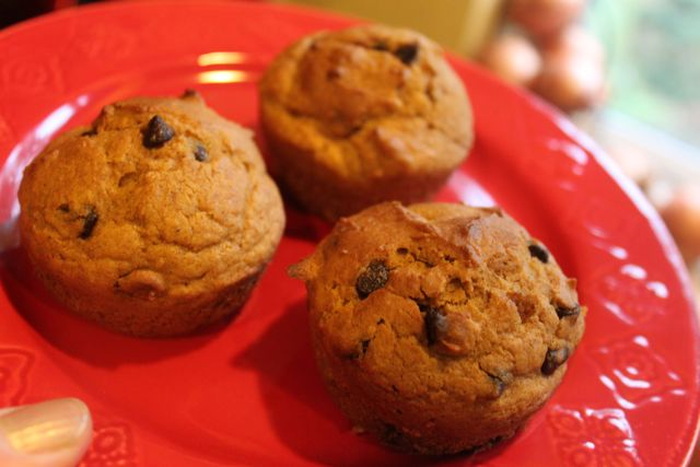 Post image for Pumpkin Chocolate-Chip Muffins