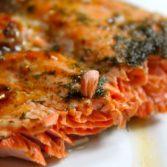 tf salmon